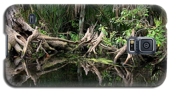 Cypress Swamp  Galaxy S5 Case by Barbara Bowen