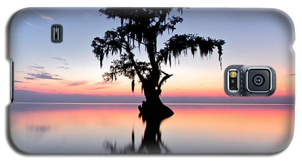 Galaxy S5 Case featuring the photograph Cypress Tree by Evgeny Vasenev