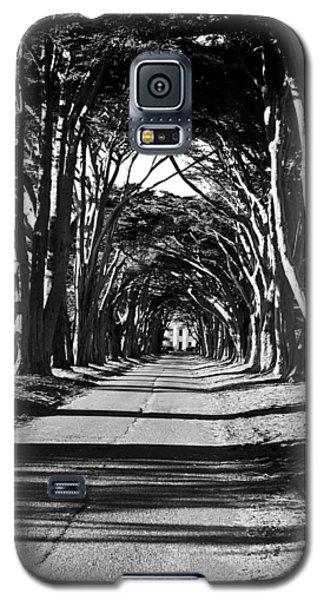 Cypress Tree Tunnel Galaxy S5 Case