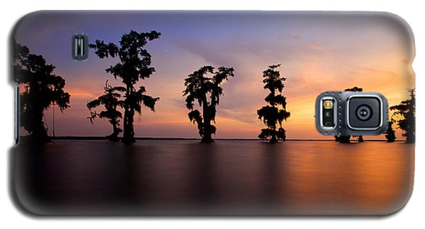 Cypress Trees Galaxy S5 Case by Evgeny Vasenev