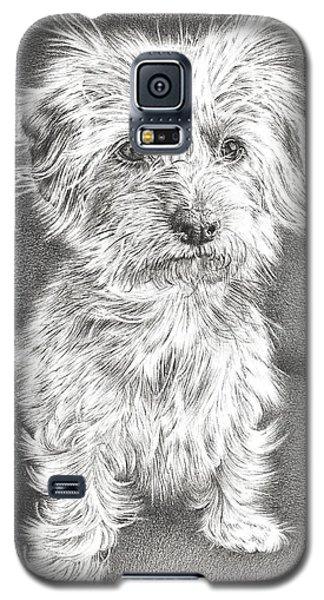 Dachshund Maltese Galaxy S5 Case