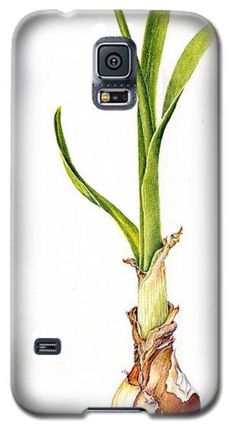 Daffodil And Bulb Galaxy S5 Case