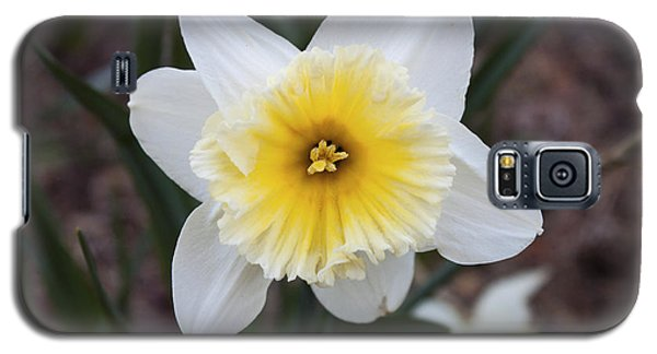 Galaxy S5 Case featuring the photograph Daffodil At Black Creek by Jeff Severson