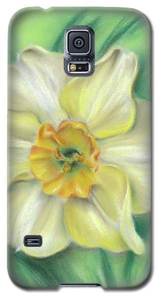 Daffodil Spring Floral Galaxy S5 Case