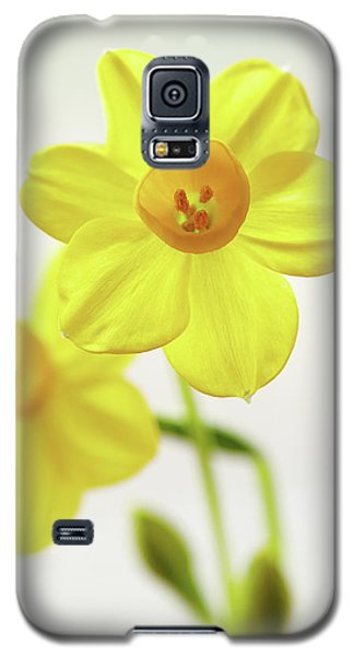 Daffodil Strong Galaxy S5 Case