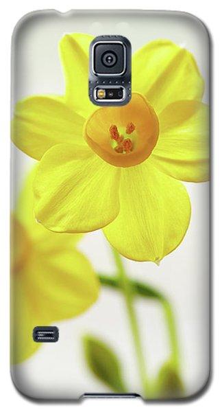 Daffodil Strong Galaxy S5 Case