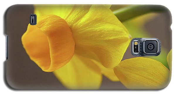 Daffodil Sunrise Galaxy S5 Case