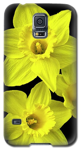 Galaxy S5 Case featuring the photograph Daffodils by Christina Rollo