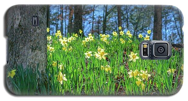 Daffodils On Hillside 2 Galaxy S5 Case