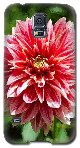 Dahlia 3 Galaxy S5 Case