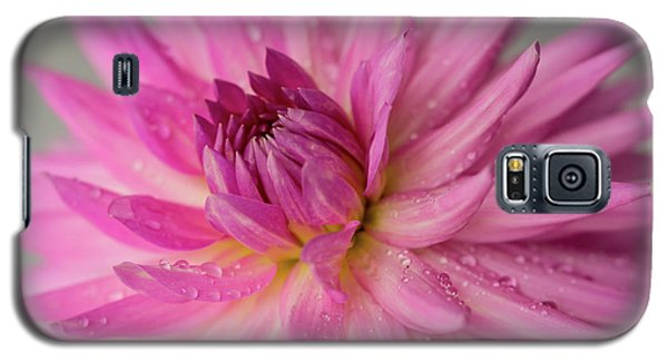 Galaxy S5 Case featuring the photograph Dahlia After The Rain by Mary Jo Allen