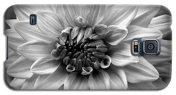 Dahlia Art Galaxy S5 Case