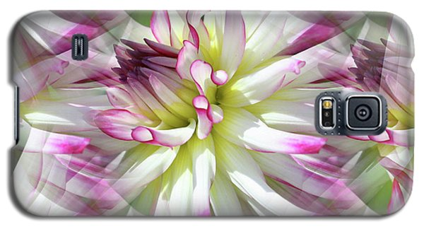 Dahlia Dreams Galaxy S5 Case