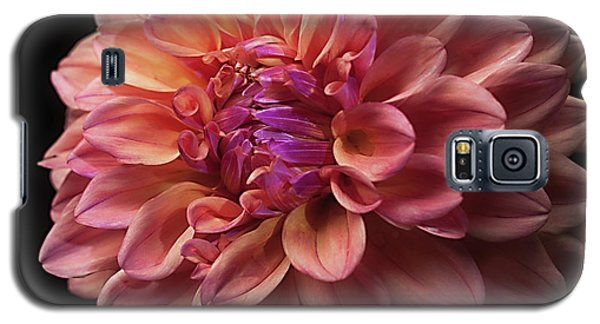 Dahlia 'ferncliff Copper' Galaxy S5 Case