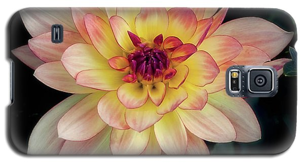 Dahlia 'keith H.' Redux Galaxy S5 Case
