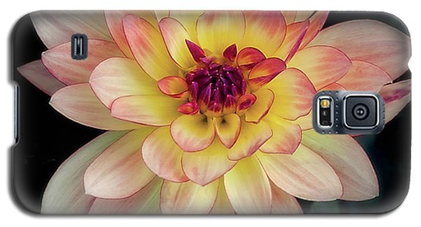 Dahlia 'keith H.' Redux Galaxy S5 Case