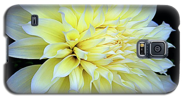 Galaxy S5 Case featuring the photograph Dahlia Kelvin Floodlight by Julie Palencia