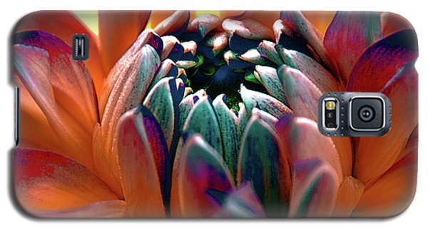 Galaxy S5 Case featuring the photograph Dahlia Multi Colored Squared by Julie Palencia