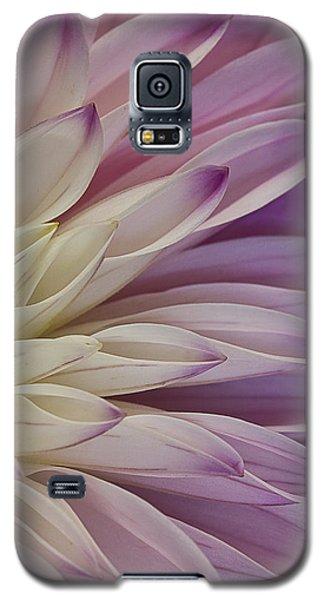 Dahlia Petals 2 Galaxy S5 Case
