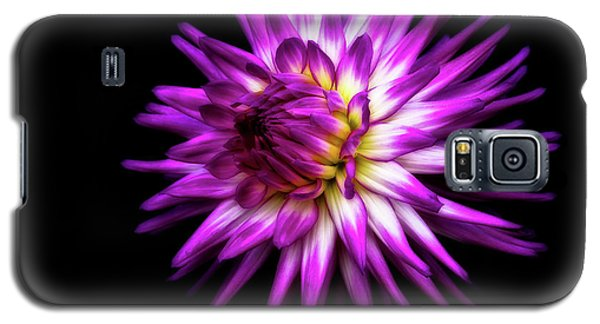 Dahlia Starburst Galaxy S5 Case