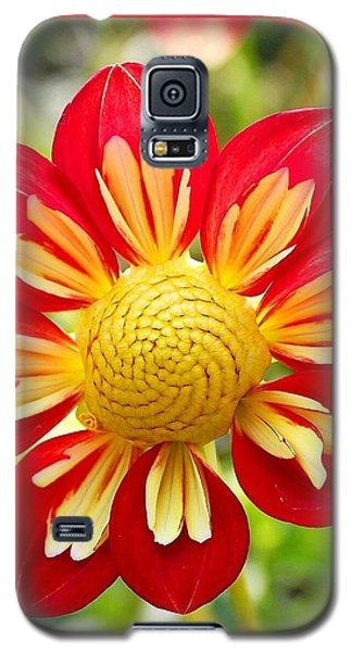 Dainty Dahlia Galaxy S5 Case