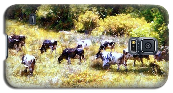 Dairy Cows In A Summer Pasture Galaxy S5 Case
