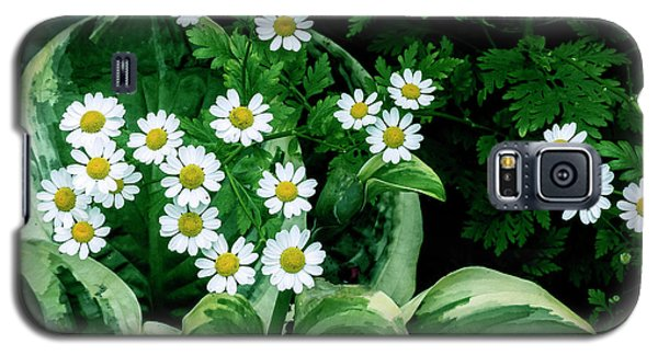 Daisies And Hosta In Colour Galaxy S5 Case