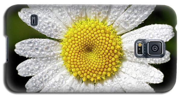 Daisy And Dew Galaxy S5 Case