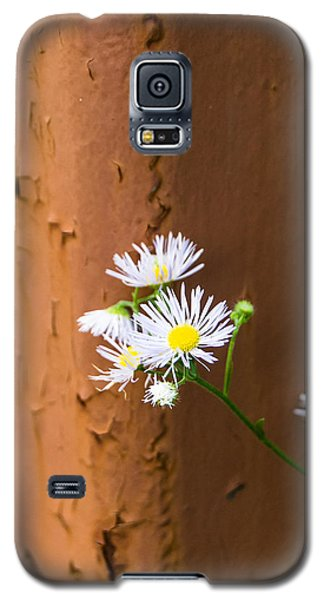 Daisy And Rust Galaxy S5 Case