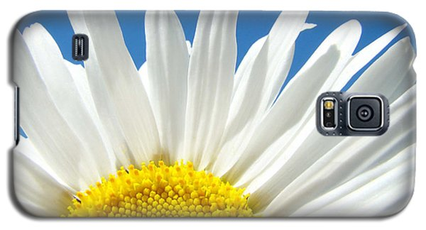 Daisy Art Prints White Daisies Flowers Blue Sky Galaxy S5 Case by Baslee Troutman