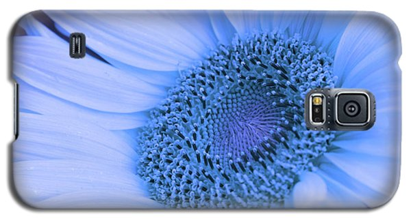 Daisy Blue Galaxy S5 Case by Marie Leslie