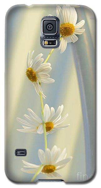 Daisy Chain Galaxy S5 Case