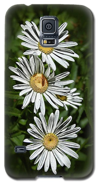 Galaxy S5 Case featuring the photograph Daisy Chain by Marie Leslie