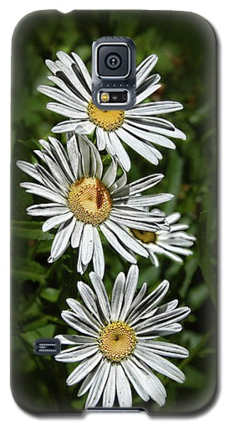 Daisy Chain Galaxy S5 Case by Marie Leslie