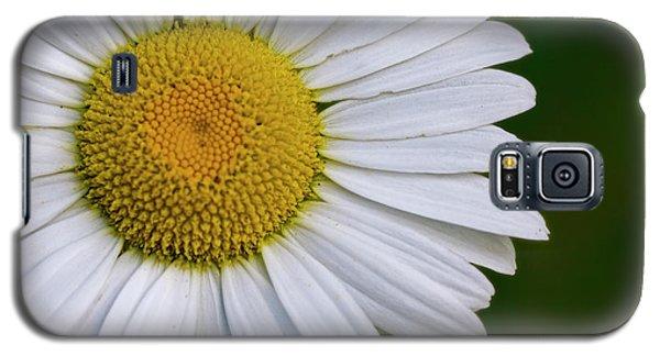 Daisy Detail Galaxy S5 Case