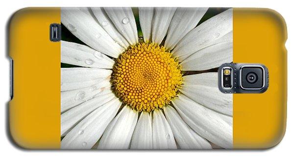 Daisy  Dew Galaxy S5 Case