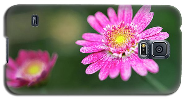 Daisy Flower Galaxy S5 Case