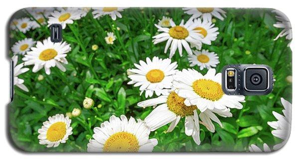 Daisy Garden Galaxy S5 Case