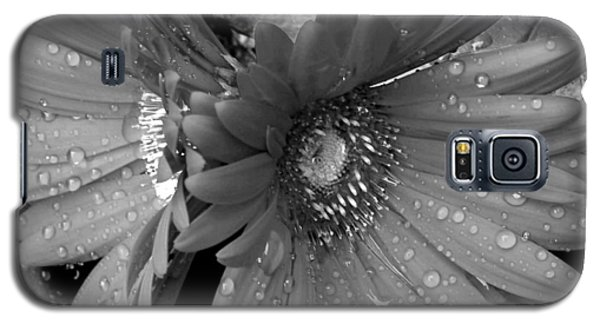 Daisy In The Rain Galaxy S5 Case