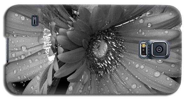 Daisy In The Rain Galaxy S5 Case