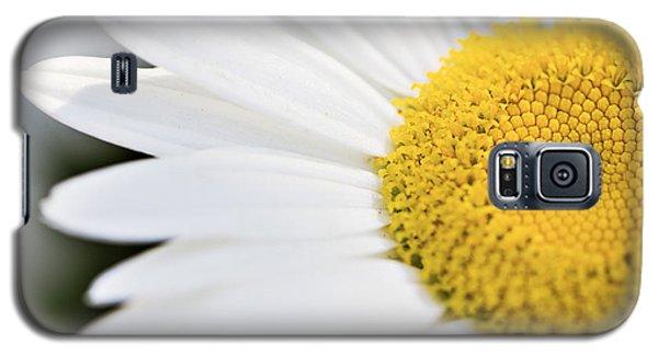 Daisy Galaxy S5 Case