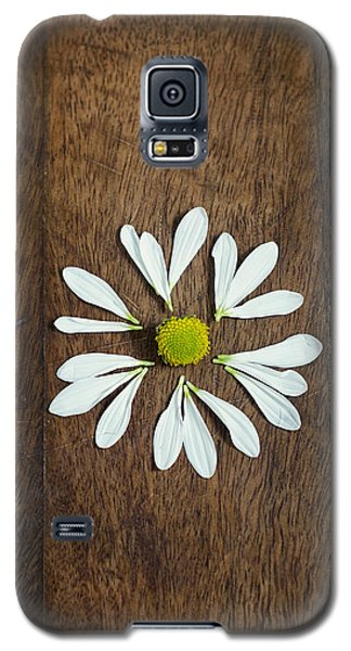 Daisy Petals On Wooden Background  Galaxy S5 Case
