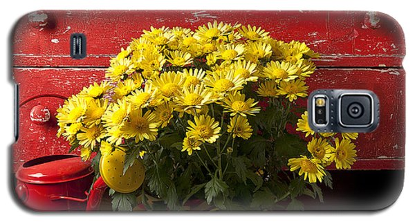Daisy Plant In Drawers Galaxy S5 Case
