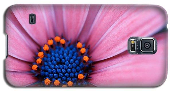 Daisy Galaxy S5 Case by Rachel Mirror
