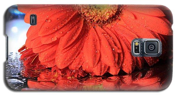 Daisy Reflections Galaxy S5 Case