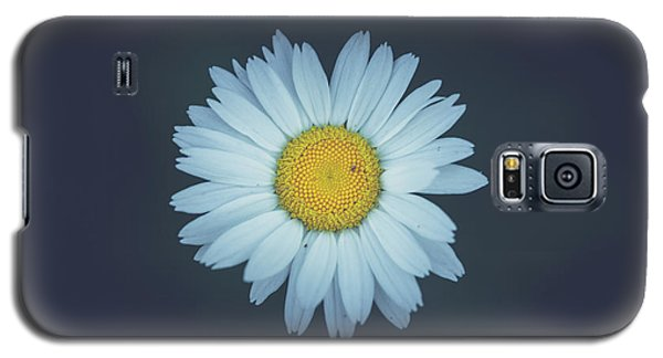 Galaxy S5 Case featuring the photograph Daisy  by Shane Holsclaw