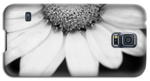 Daisy Smile - Black And White Galaxy S5 Case