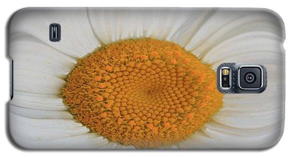 Daisy Sunny Side Up Galaxy S5 Case
