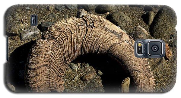 Dall Sheep Horn Galaxy S5 Case
