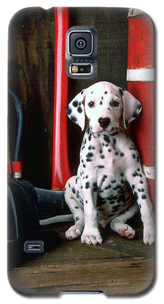 Dalmatian Puppy With Fireman's Helmet  Galaxy S5 Case